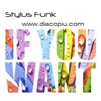 stylus-funk-feat-wendy-lewis-if-you-want-cds