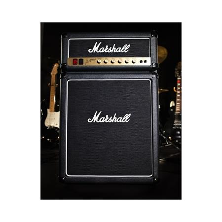 marshall-fridge_medium_image_3