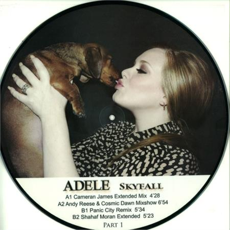 adele-skyfall-part-1