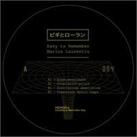 easy-to-remember-marius-laurentiu-teorie-dello-spazio-tempo-vinyl-only