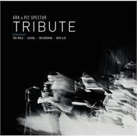 various-ark-pit-spector-metaboman-losoul-dave-aju-the-mole-tribute-2x12