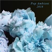 various-artists-pop-ambient-2018