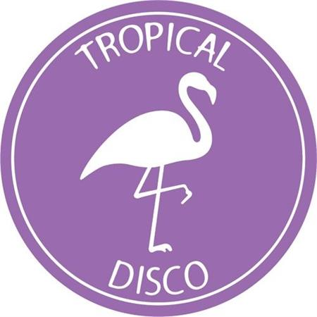 various-artists-tropical-disco-edits-vol-2