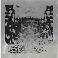 ascetic-everything-is-becoming-remixes