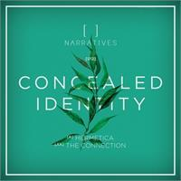 concealed-identity-hermetica-the-connection