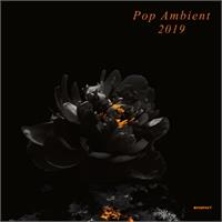 various-artists-pop-ambient-2019