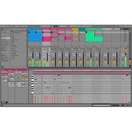 ableton-live-10-standard_medium_image_2