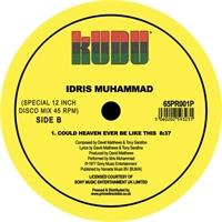 idris-muhammad-could-heaven-ever-be-like-this-late-nite-tuff-guy-remix