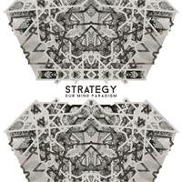 strategy-dub-mind-paradigm-lp