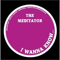 the-meditator-i-wanna-know-hold-a-medz-mix
