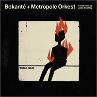 bokant-metropole-orkest-jules-buckley-what-heat