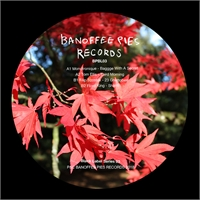 various-artists-monotronique-tom-ellis-filip-szostak-flord-king-banoffee-pies-black-label-03