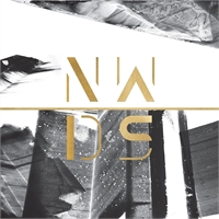 various-artists-nowadays-v