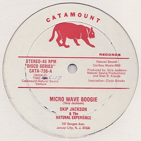 skip-jackson-the-natural-experience-micro-wave-boogie