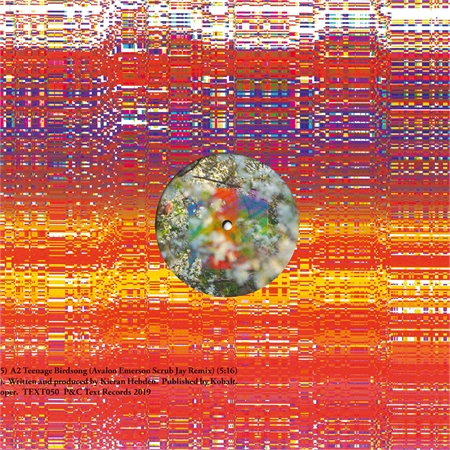 four-tet-teenage-birdsong