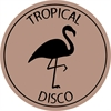 various-artists-tropical-disco-edits-vol-8_image_2