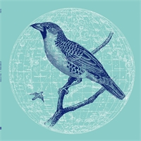 genius-of-time-peace-bird-ep