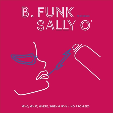 b-funk-feat-sally-o-who-what-where-when-why