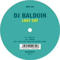 dj-balduin-lost-cat