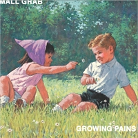 mall-grab-growing-pains