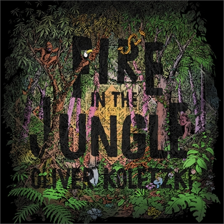 oliver-koletzki-fire-in-the-jungle_medium_image_1