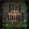 oliver-koletzki-fire-in-the-jungle_image_1