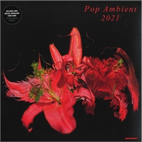 various-artists-pop-ambient-2021