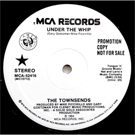 the-townsends-under-the-whip