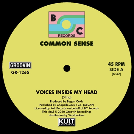 common-sense-voices-inside-my-head
