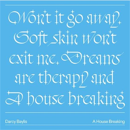 darcy-baylis-a-house-breaking