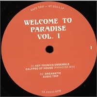 various-artists-welcome-to-paradise-italian-dream-house-89-93-vol-1