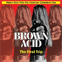 various-artists-brown-acid-the-first-trip