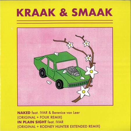 kraak-smaak-naked-in-plain-sight