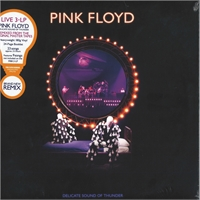 pink-floyd-delicate-sound-of-thunder-restored-re-edited-remixed