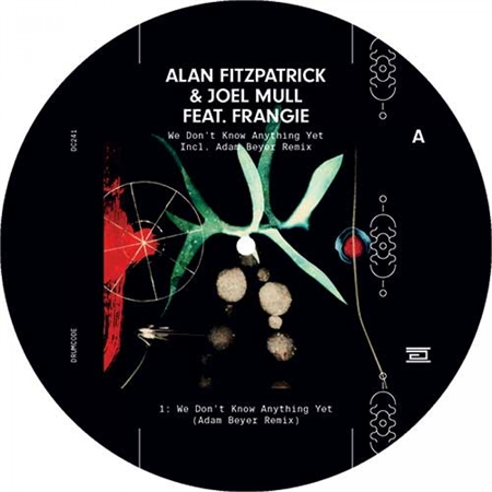alan-fitzpatrick-joel-mull-feat-frangie-we-don-t-know-anything-yet
