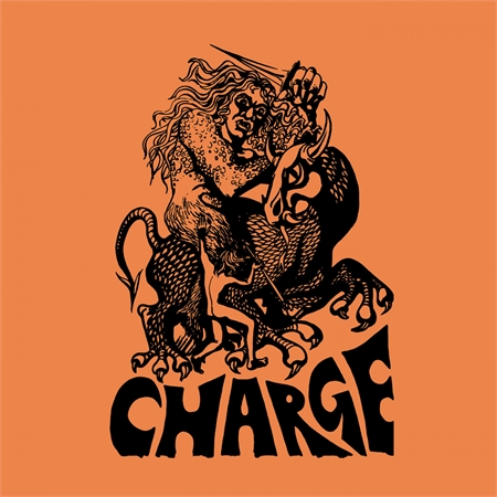 charge-charge
