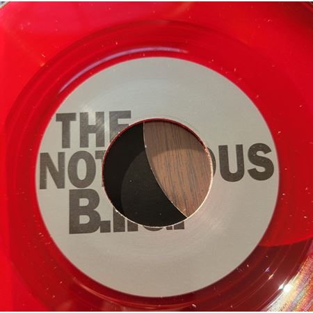 notorious-b-i-g-duets-the-final-chapter_medium_image_10