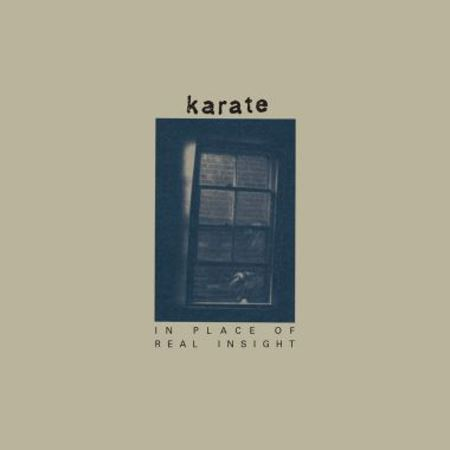 karate-in-place-of-real-insight